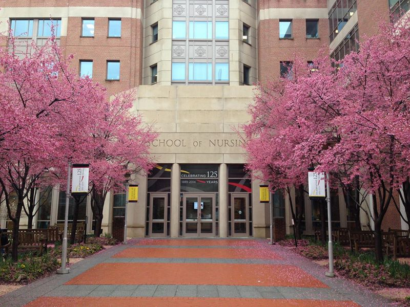 University of Maryland School of Dentistry