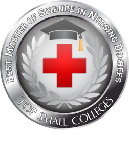 Badge - Best Master of Science in Nursing Degrees - Top Small Colleges