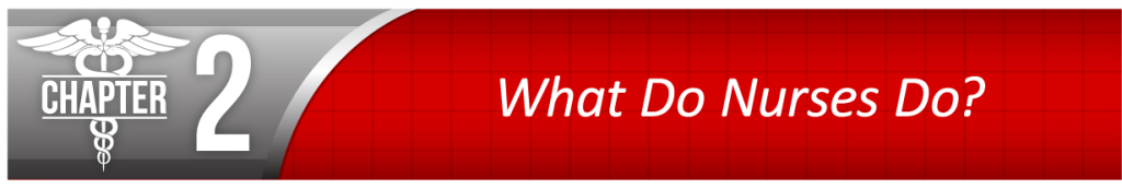 Chapter 2 - What Do Nurses Do?