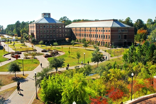 Georgia Southern Online Nursing Degree