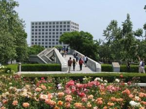 University of California Irvine Best Nursing Degrees