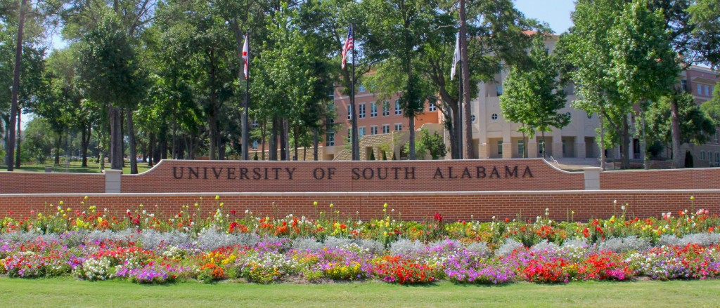 university-of-south-alabama-doctor-of-nursing-practice