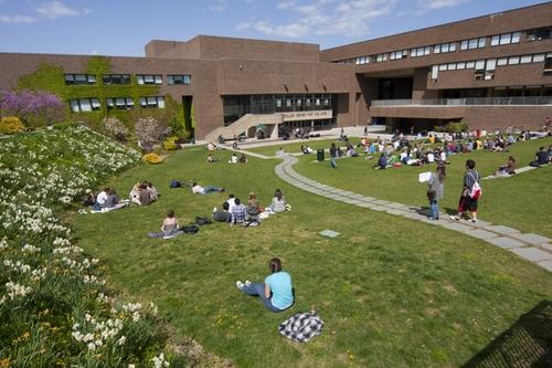 Stony Brook University Best Nursing Degrees