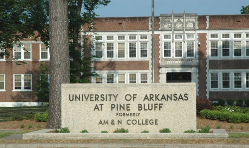 University of Arkansas Pine Bluff Best Nursing Degrees