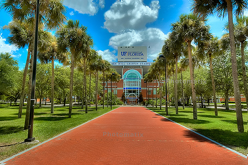 University of Florida Best Nursing Degrees